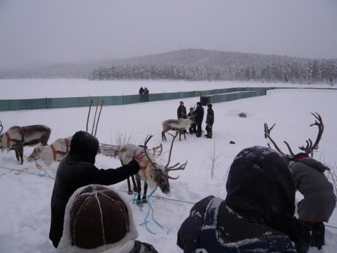 jokkmokk-2009-5