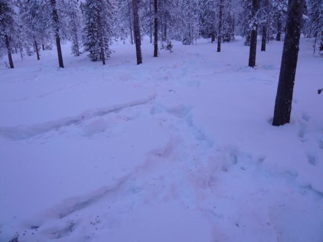 winter-2009-16