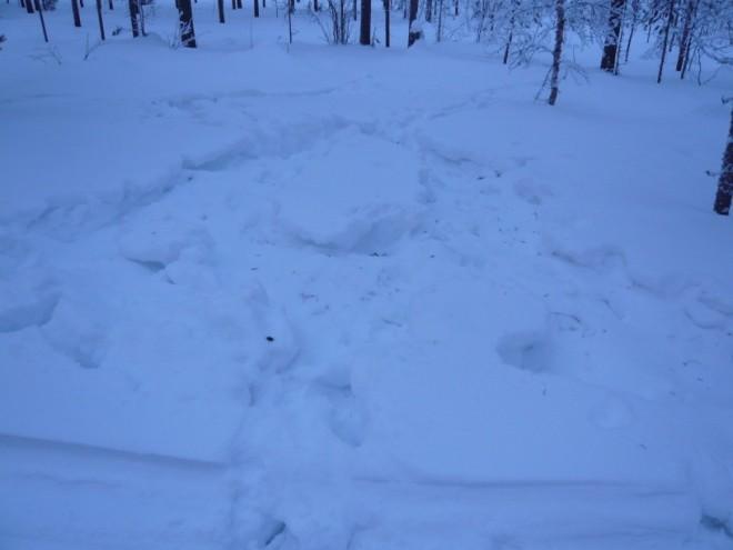 winter-2009-17