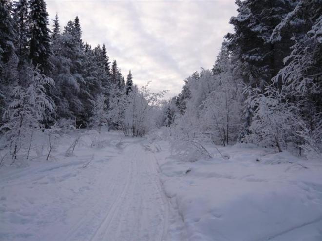 winter-2009-20-medium