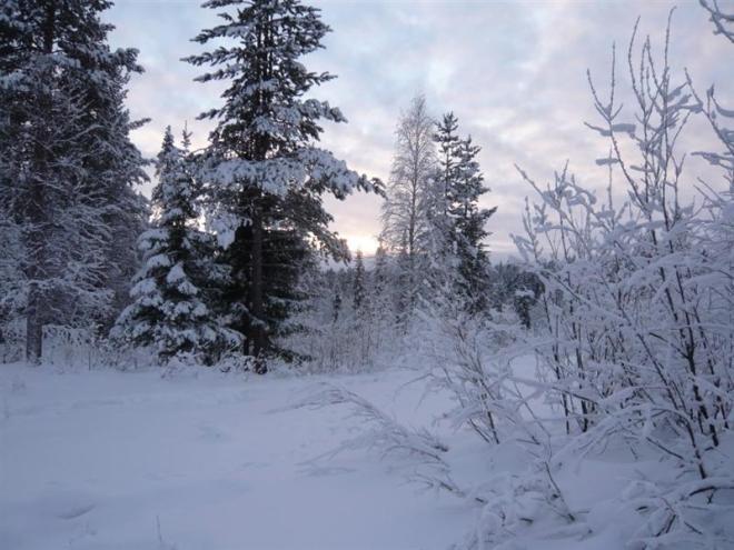 winter-2009-21-medium1