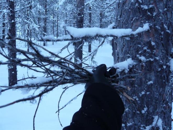 winter-2009-24-medium1
