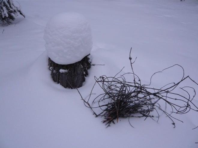 winter-2009-25