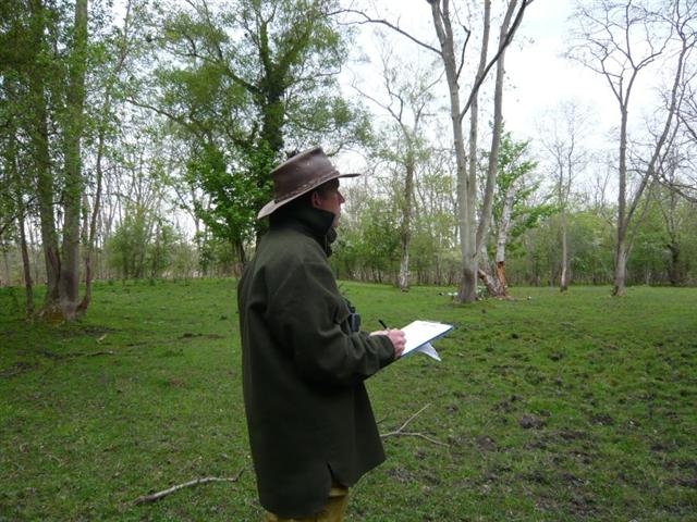 Bird survey-6 (Small)