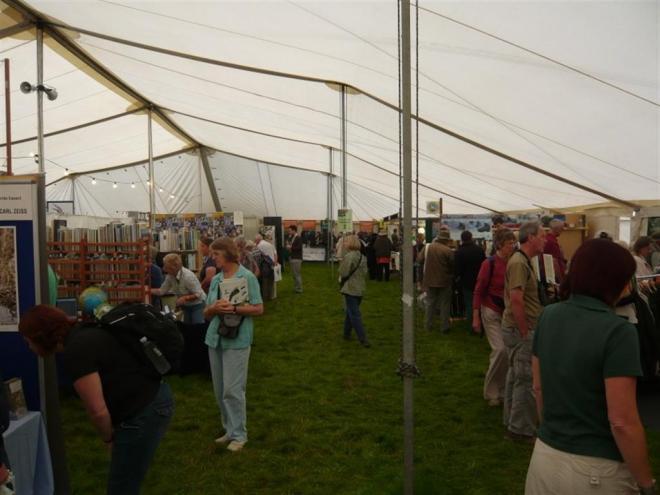 british bird fair (Large)