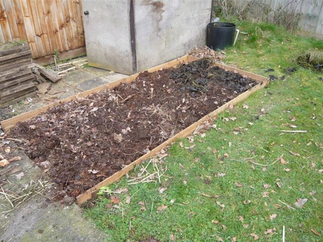 veg garden-4 (816 x 612) (Small)
