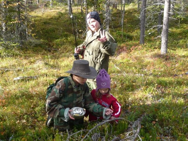 collecting club moss tops (Small)