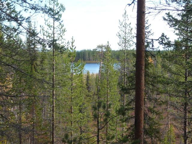 a view to the lake (Small)