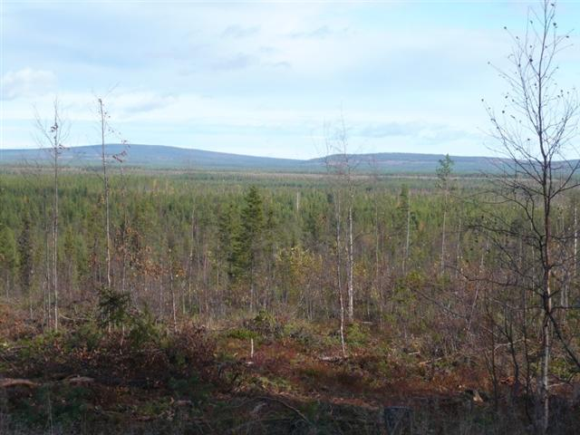 view-2 (Small)