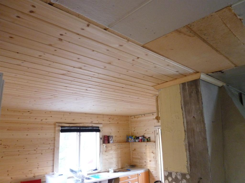 Repairing Kitchen Ceiling Laplander S Natural Lore Blog