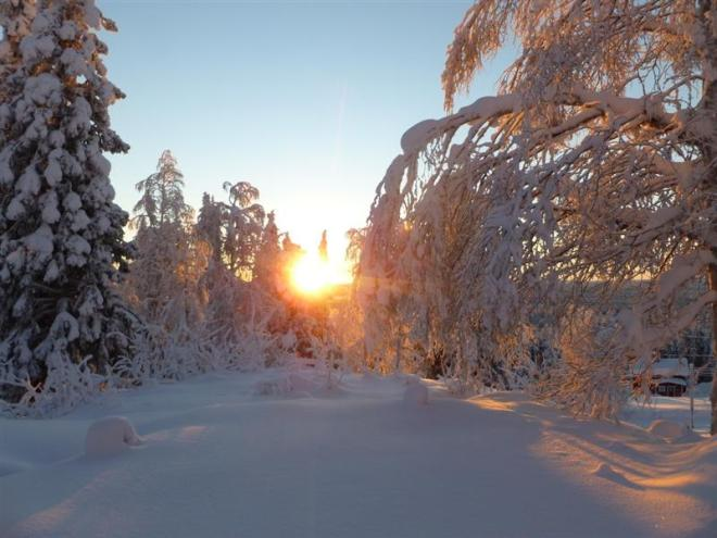 nattavaara winter sun