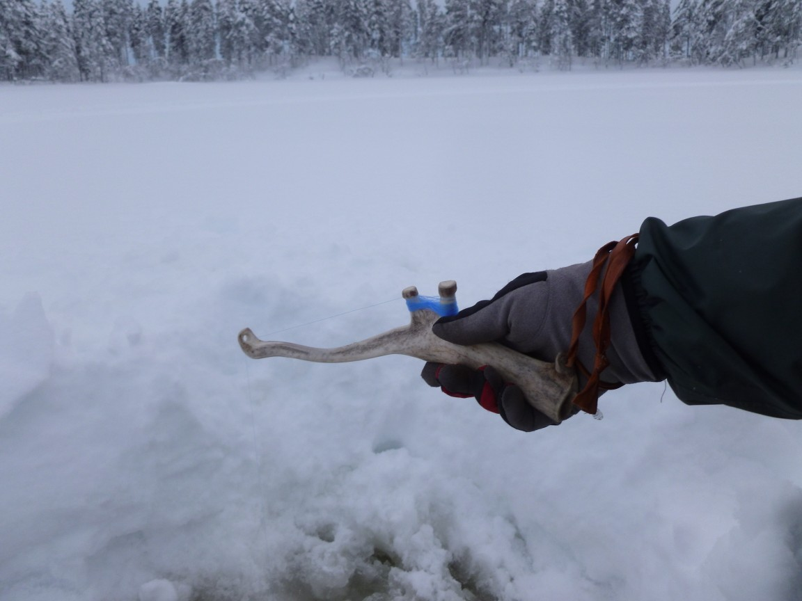 Testing my reindeer horn ice fishing rod laplander 39 s for Ice fishing pole