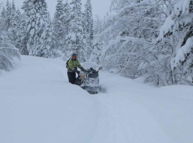 folke with snowmobile