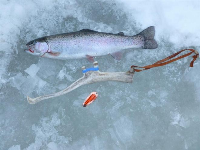 trout and reindeer horn rod