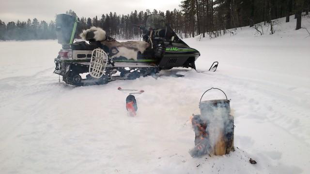 swedish fire torch naturallore