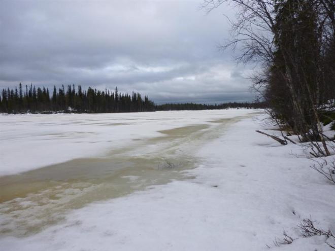frozen lake-1 (Large)