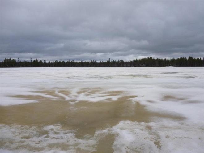 frozen lake-2 (Large)