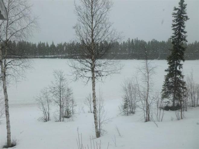 snowing-1 (Medium)