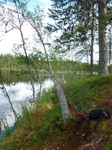 fishing (Small)