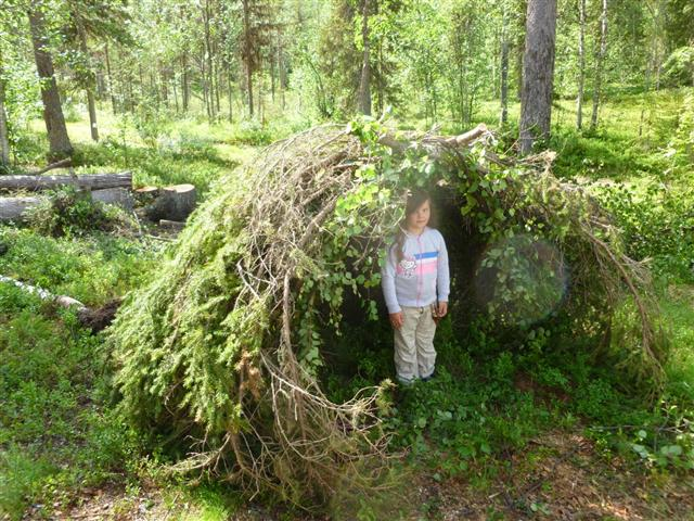 spruce shelter-1 (Small)