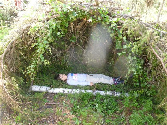 spruce shelter-2 (Small)
