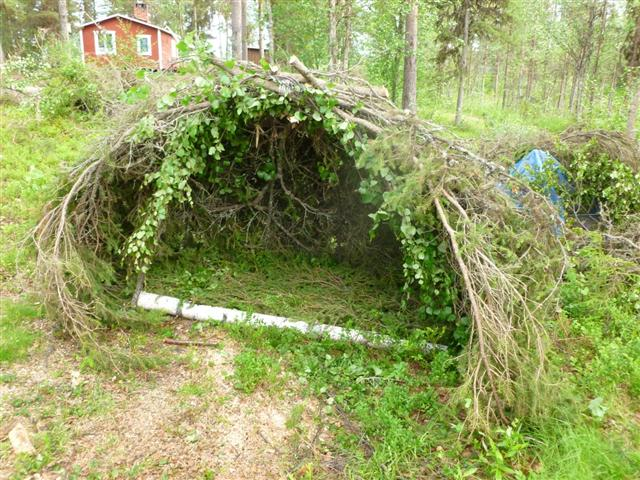 spruce shelter-3 (Small)