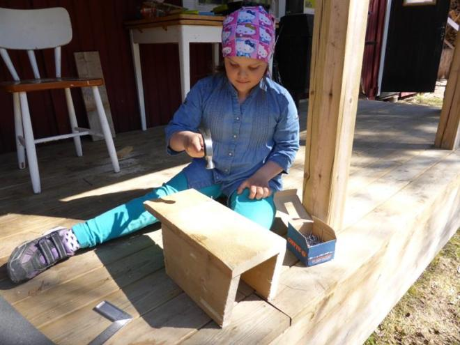 emma building nestbox (Medium)