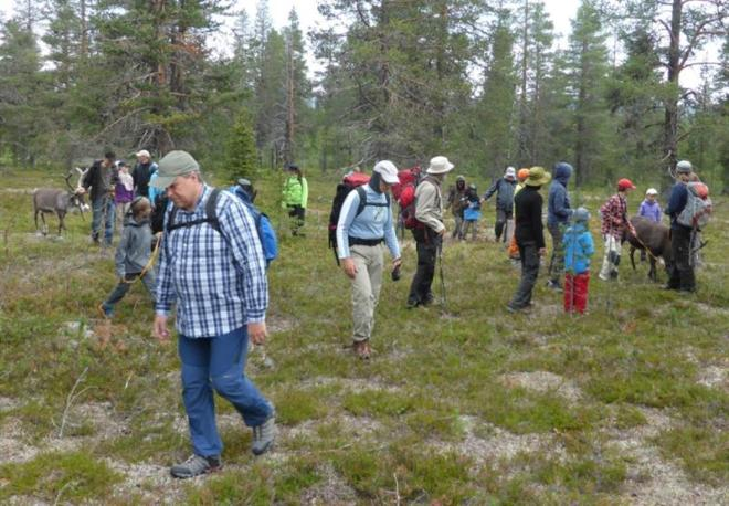 walking on solberget (Medium)