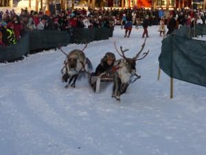 jokkmokk marknad reindeer race