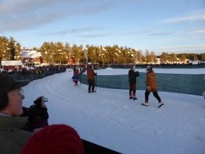 jokkmokk reindeer race-2