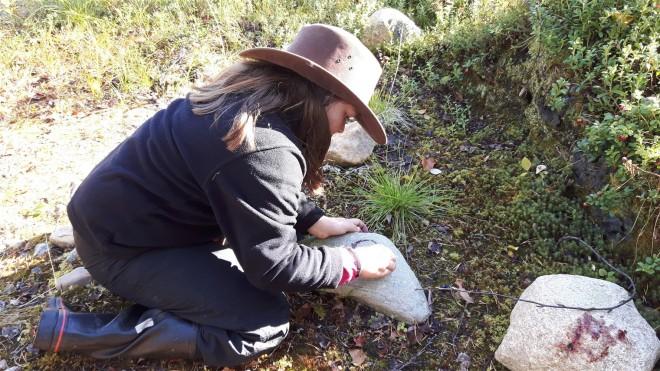 emma stone art lapland