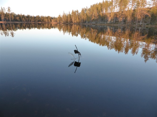 boat on water lapland
