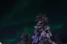 northernlight-nattavaara
