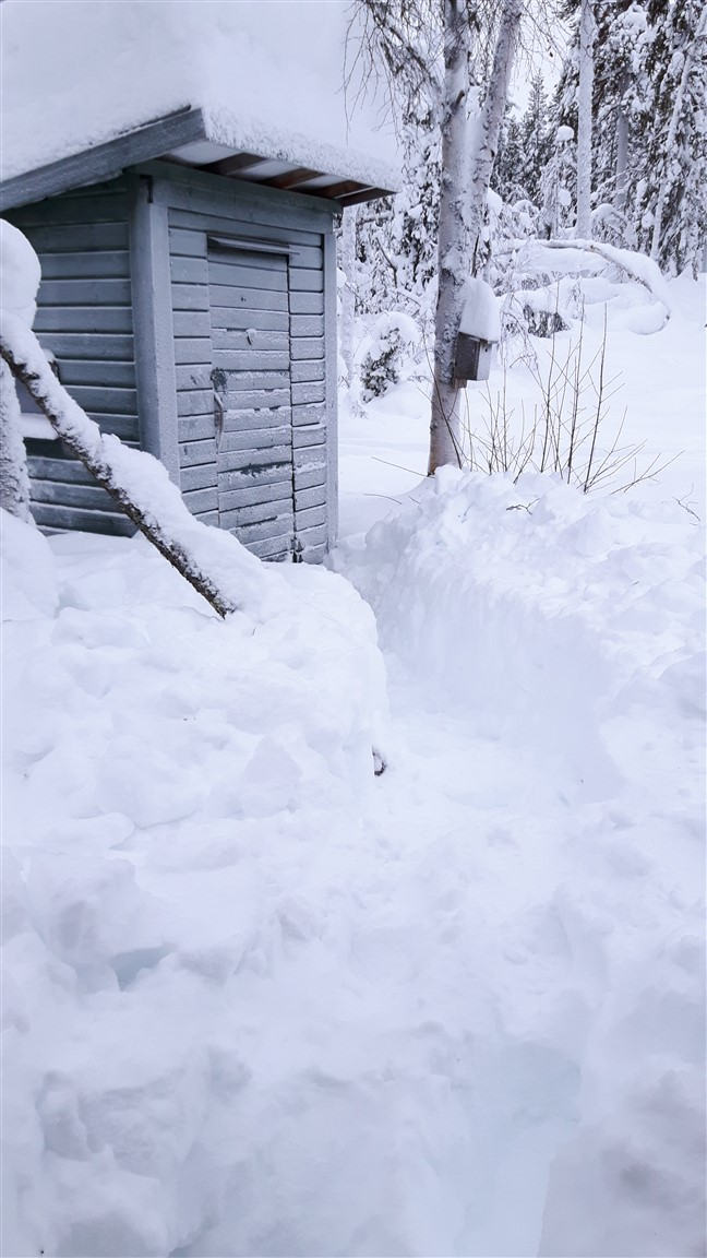 clearing snow to toilet