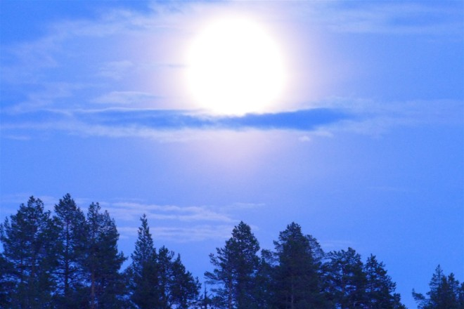 fullmoon-swedish-lapland