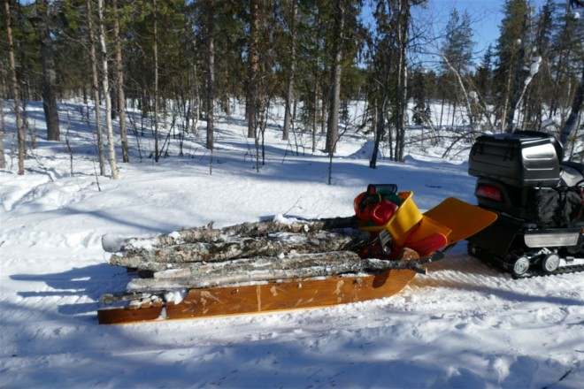 sled-loaded-logs