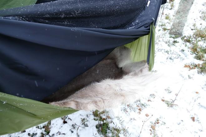 hammock-reindeer skin