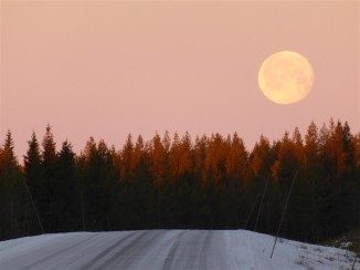 fullmoon-swedishlapland