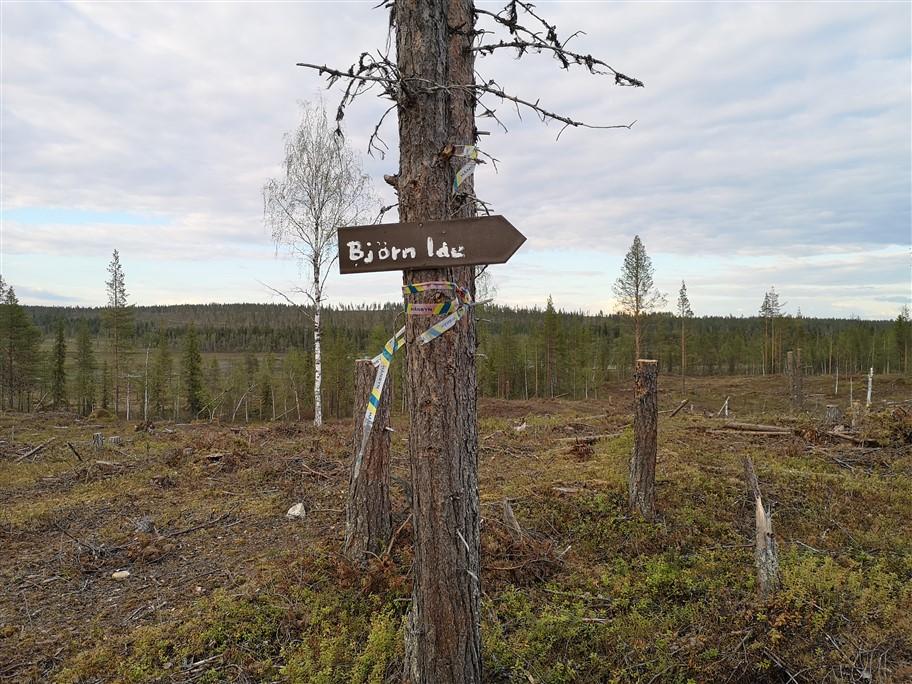 bear den sign